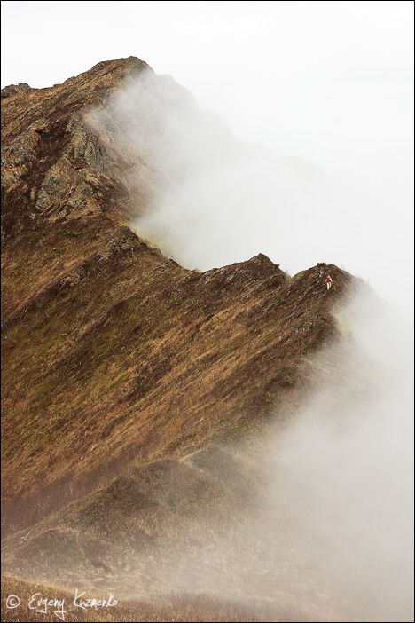 По краю тумана