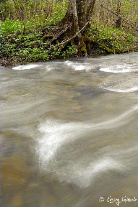 Паводок на реке Еланька