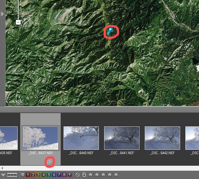 Скриншот Nikon View NX, лента фотографий