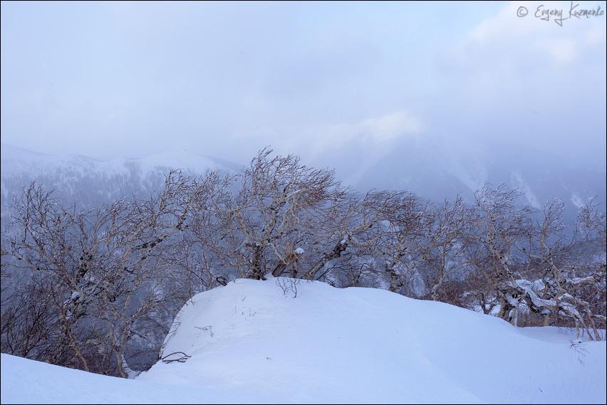 Гора Пушкинская в тумане