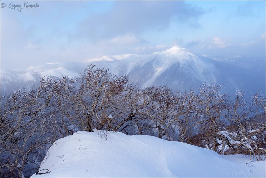 Вид на гору Пушкинскую