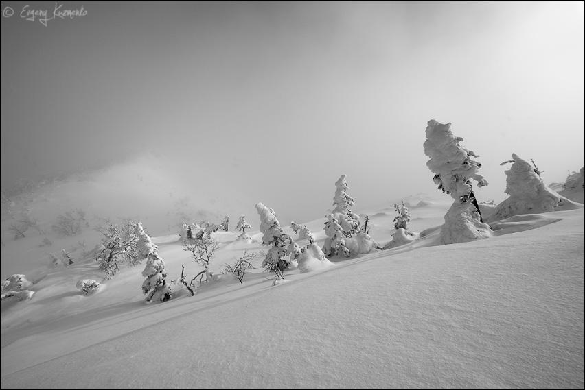 Перед вершиной горы Пушкинской