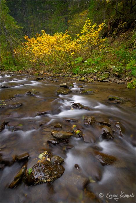 Осень на ручье Ястребок