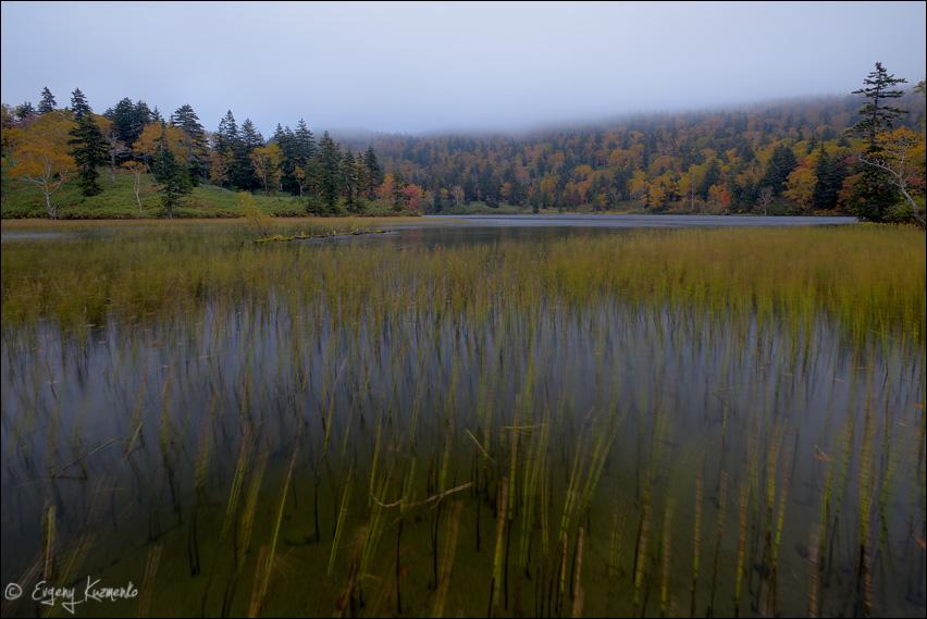 Озеро Моховое в вечернем тумане