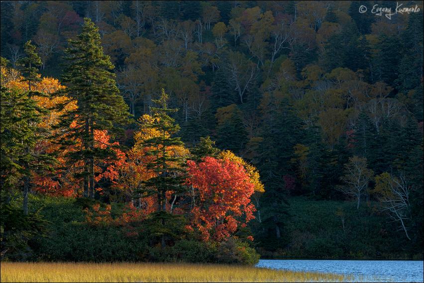 Рассвет на озере Моховое