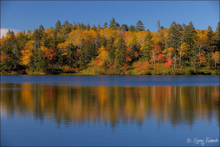 Зеркало озера Моховое