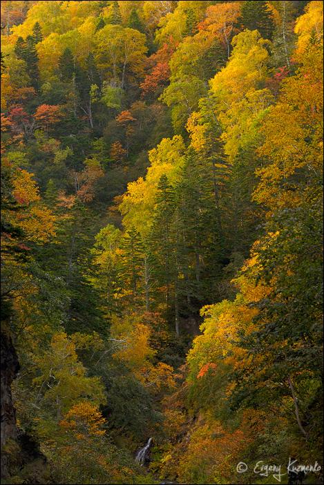 Осень у Шуйского водопада