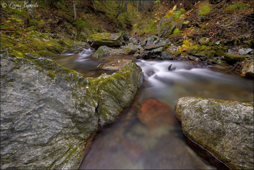 Верховья реки Марковки
