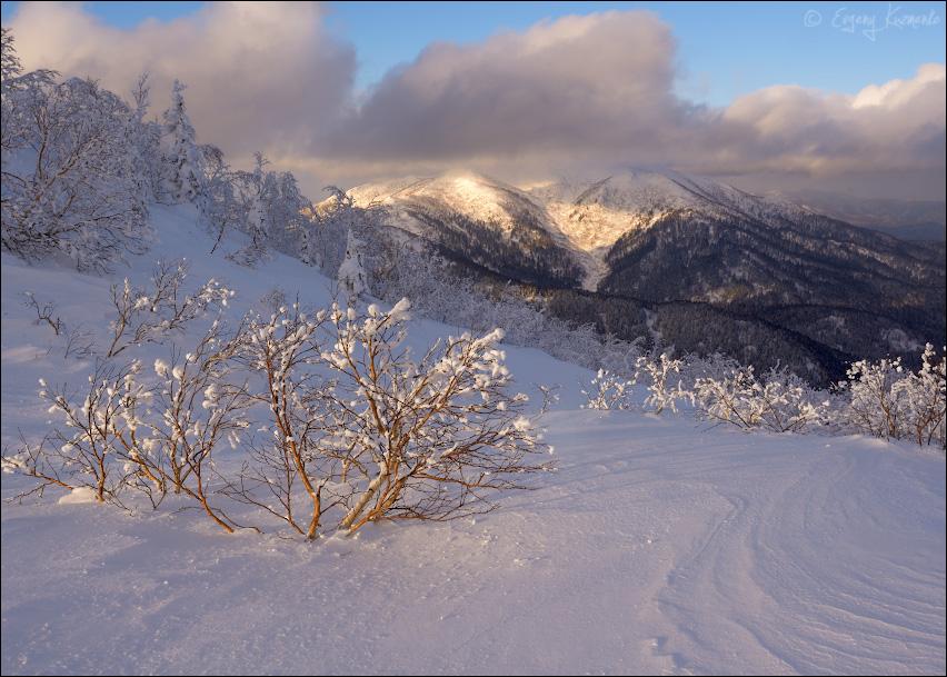 Вид на гору Августиновича