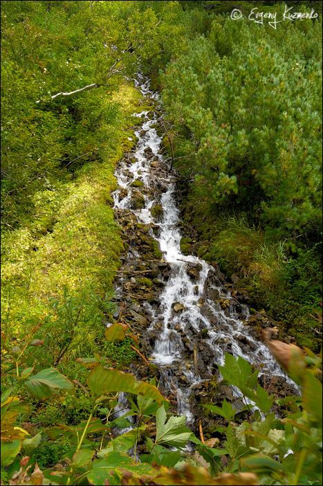 Один из притоков Пурш-Пурша